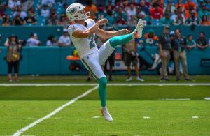 Matt Haack Dolphins Punter