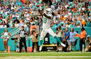 Preston Williams Miami Dolphins