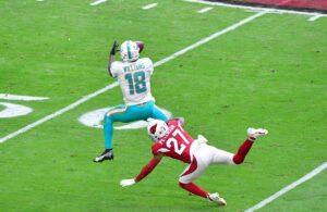 Preston Williams Miami Dolphins